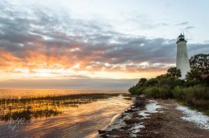 Khám Phá Các Địa Điểm Du Lịch Tại Thành Phố Tallahassee, Florida