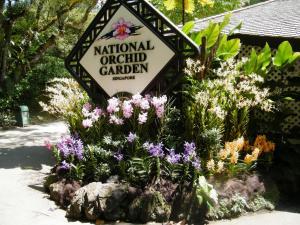 Botanic Gardens - Thành Phố Trong Vườn Ở Singapore
