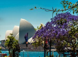 Kinh Nghiệm Du Lịch Úc Mùa Xuân Mà Quý Khách Nên Biết
