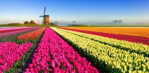 Các mùa ở châu âu – Du lịch Châu Âu mùa nào đẹp nhất ??