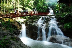 Cao Nguyên Cameron Malaysia - Địa Điểm Yên Bình Dành Cho Du Khách