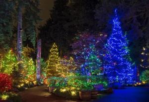 Giáng Sinh Đầy Màu Sắc Ở Xứ Sở Thần Tiên - Đất Nước Canada