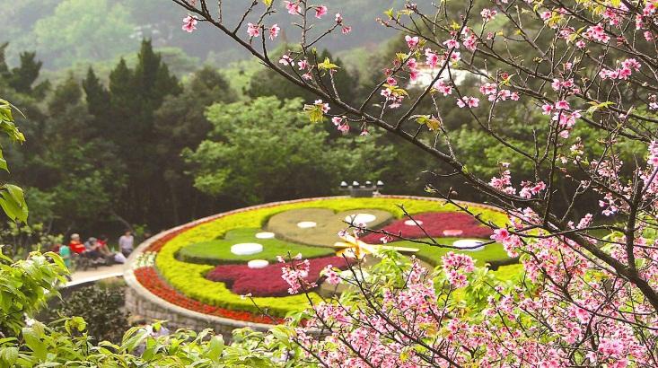 Tour Du Lịch Đài Loan Tết 2018: Đài Bắc – Đài Trung – Cao Hùng Làng Văn hoá Cửu Tộc – Công viên Dương Minh Sơn