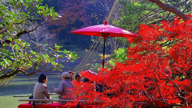Tour Du Lịch Nhật Bản 5 Ngày 4 Đêm: Hokkaido - Sapporo - Tokyo - Fuji