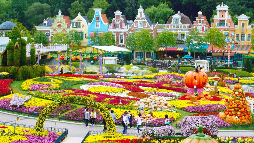Tour du lịch Hàn Quốc: Seoul - Jeju - Everland - Nami - Yeouido