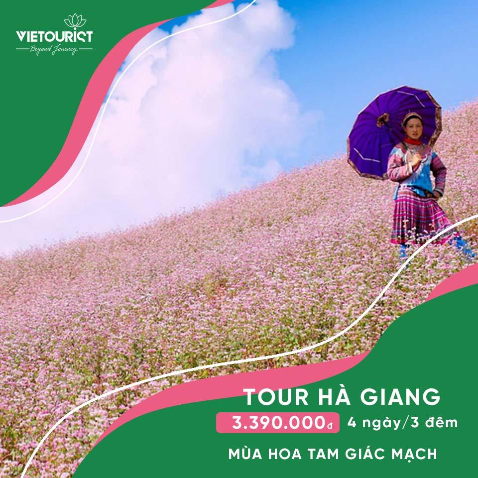 Tour Hà Nội - Hà Giang - Cao Nguyên Đá Đồng Văn - Mùa Hoa Tam Giác Mạch