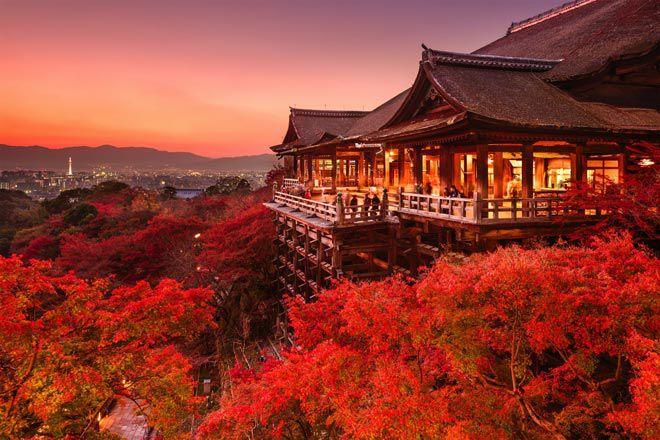 Tour Du Lịch Nhật Bản 5 Ngày 4 Đêm: Osaka - Nara - 1 Day Free - Kyoto