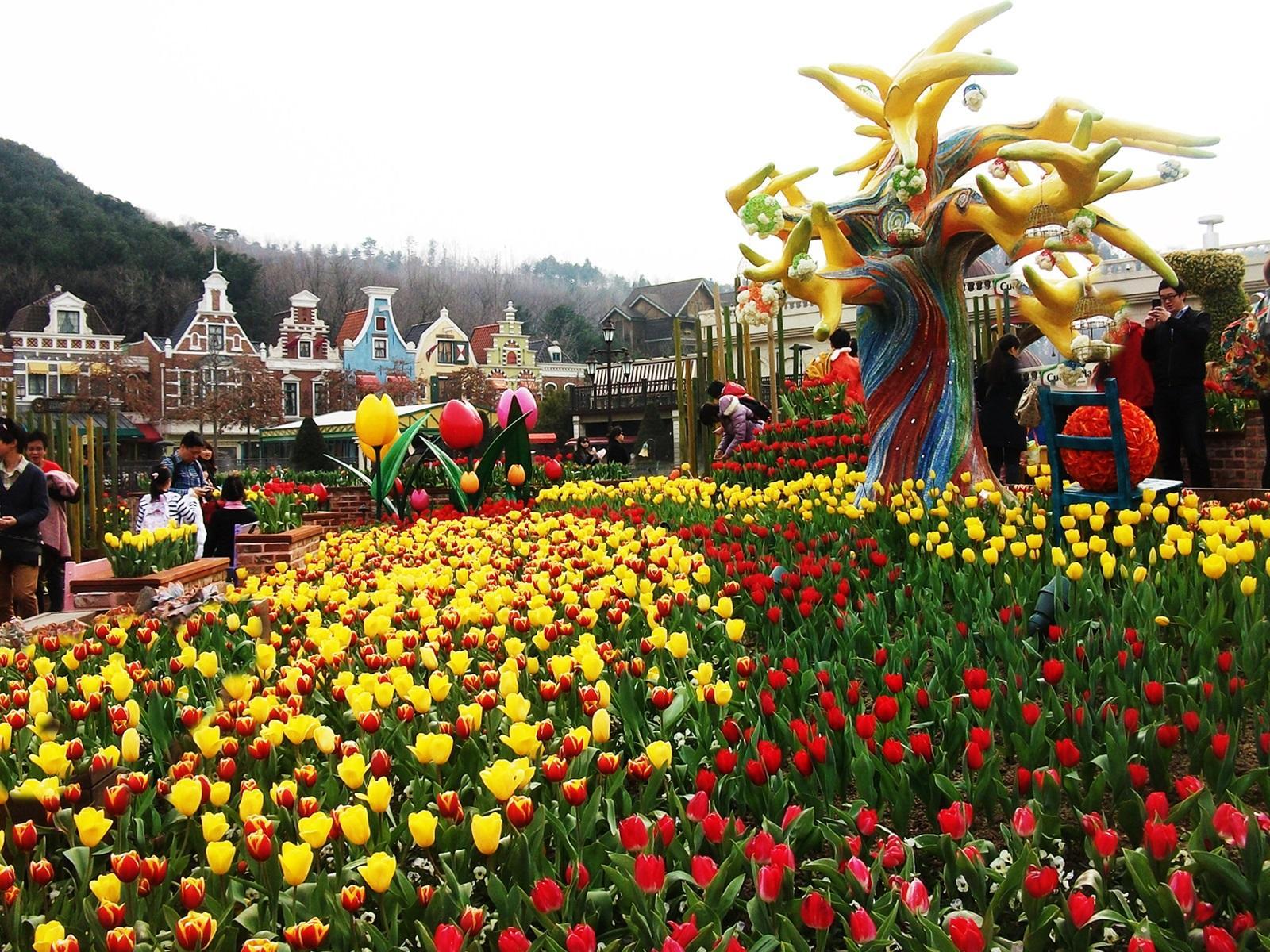 Du lịch Hàn Quốc 2016: Seoul - Jeju - Nami - Everland