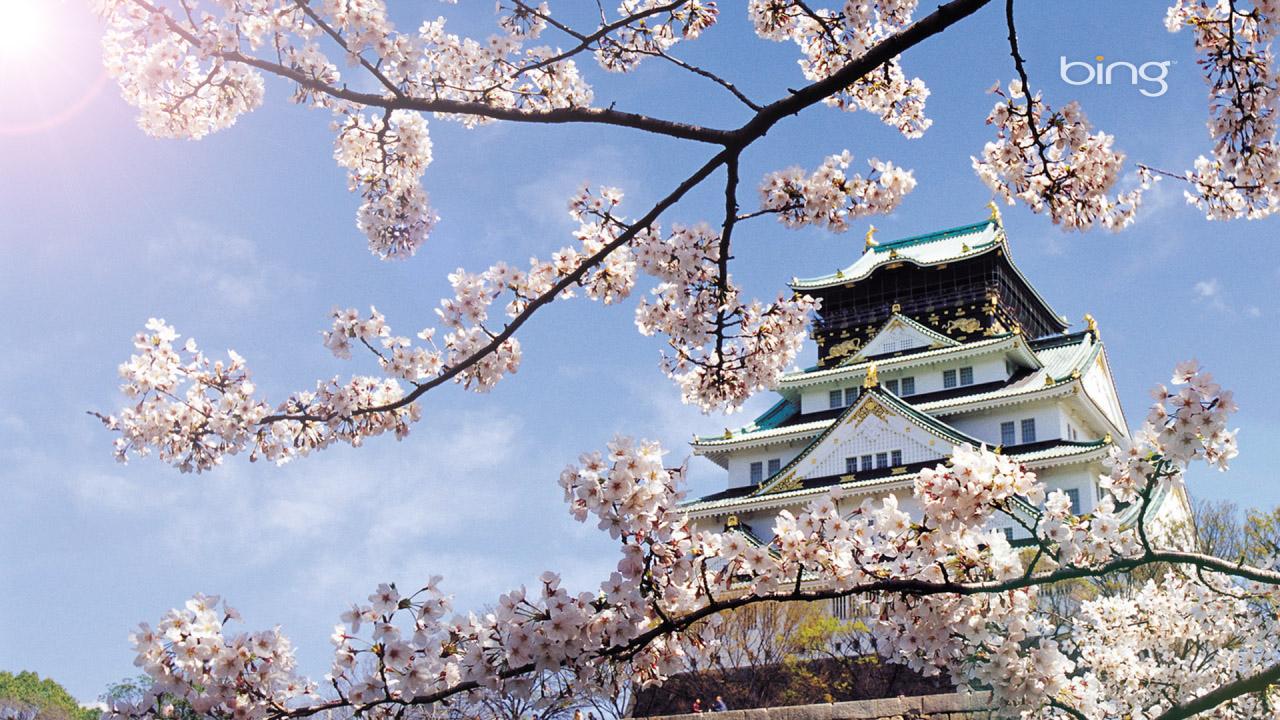 Tour du lịch Nhật Bản - Hàn Quốc