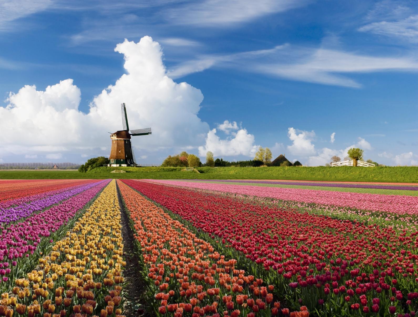 Tour Du Lịch Hà Lan Giá Rẻ Kết Hợp 6 Nước Ý - Vatican - Hà Lan - Đức - Bỉ