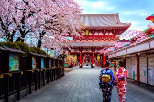 Tour Du Lịch Nhật Bản Sắc Hoa Anh Đào Trên Cung Đường Vàng: Osaka - Kyoto - Fuji - Tokyo