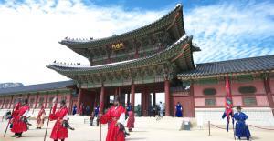 Tour du lịch Hàn Quốc: Seoul - Nami - Everland - Drum cat show