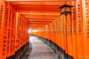 Tour Du Lịch Nhật Bản 6 Ngày 5 Đêm: Narita - Tokyo - Disneyland - Kyoto - Kobe - Osaka
