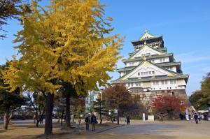 Tour Du Lịch Nhật Bản 5 Ngày 4 Đêm: Tokyo - Núi Phú Sĩ - Kyoto - Wakayama - Kobe