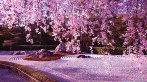 Tour Du Lịch Nhật Bản Sắc Hoa Anh Đào Trên Cung Đường Vàng: Tokyo - Phú Sĩ - Kyoto - Kobe - Osaka