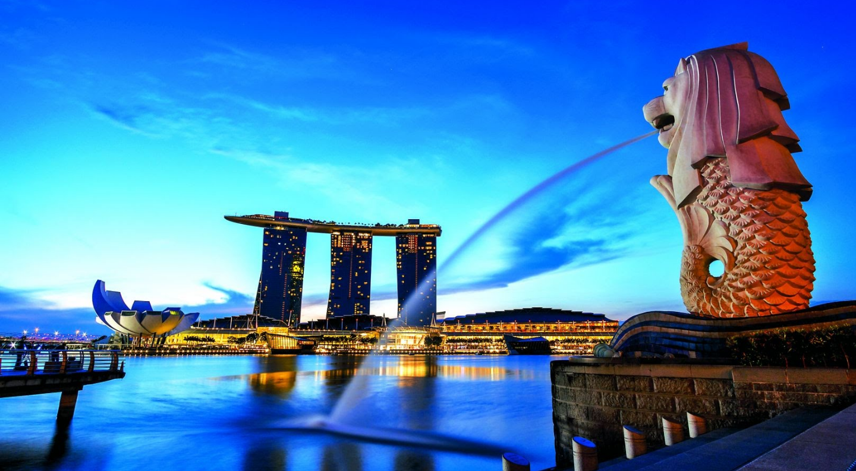 Sư tử biển - Singapore