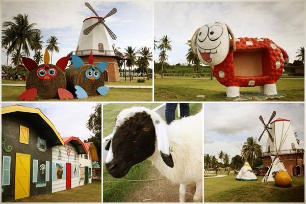 Nôn trại cừu Sheep Farm