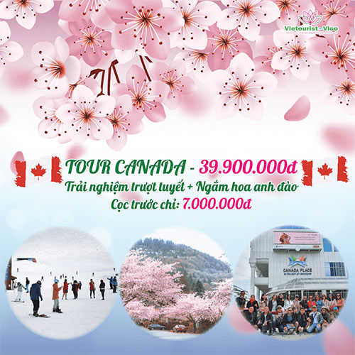 Tour du lịch Canada Vietourist