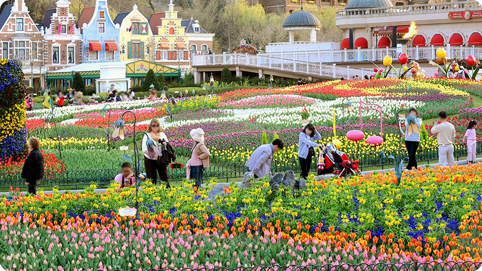 Công viên Hàn Quốc - Vietourist
