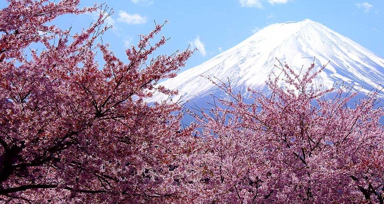 Núi Phú Sĩ - Du lịch Nhật Bản giá rẻ Vietourist